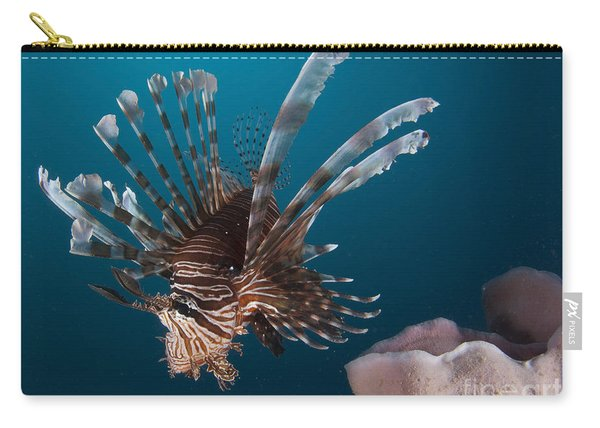 Close-up View Of A Lionfish. Gorontalo Carry-all Pouch
