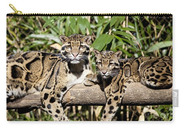 Carry-all Pouch featuring the photograph Clouded Leopards by Brian Jannsen