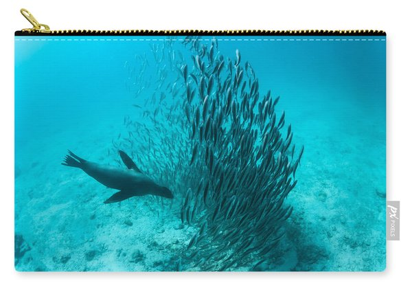 Galapagos Sea Lion Hunting Fish Rabida Carry-all Pouch