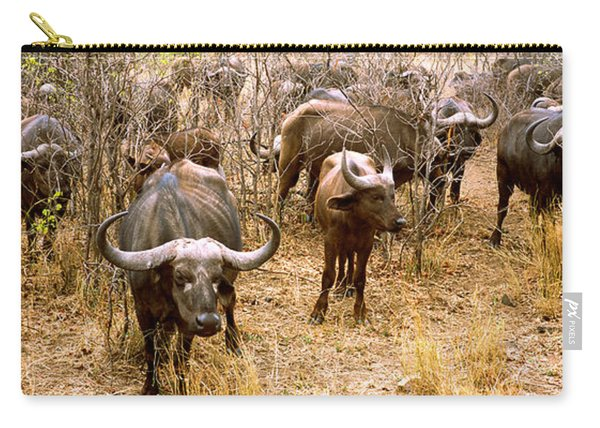 Herd Of Cape Buffaloes Syncerus Caffer Carry-all Pouch