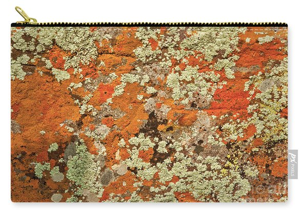 Carry-all Pouch featuring the photograph Lichen Abstract by Mae Wertz