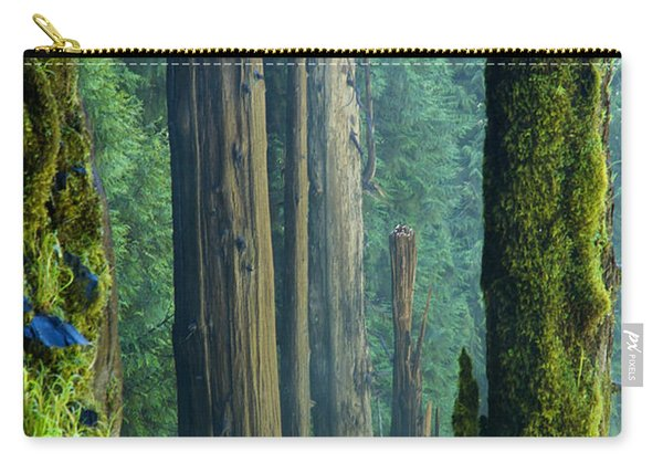 Carry-all Pouch featuring the photograph Northwest Forest    by Mary Lee Dereske