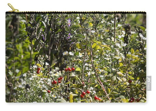 Rose Hips And Asters In A Blaze Of Color - Fine Art Photographic Carry-all Pouch