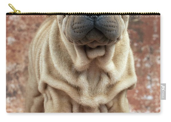 Pei Dog  2 Compartment Pouch Chinese Shar