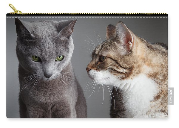 Two Cats Carry-all Pouch