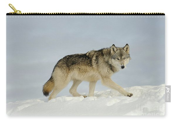 Wolf In Winter Carry-all Pouch