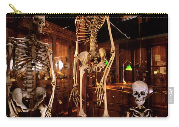 2000s Three Human Skeletons Displayed Carry-all Pouch