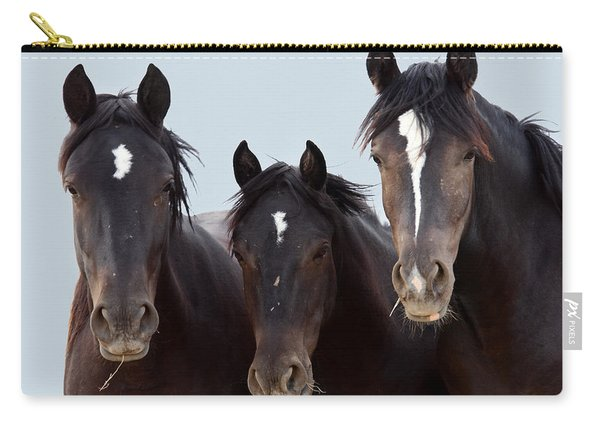 3 Amigos Wild Mustang Carry-all Pouch