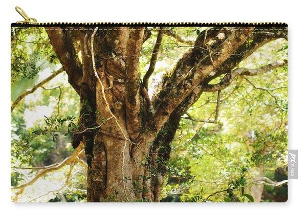 Kingdom Of The Trees. Peradeniya Botanical Garden. Sri Lanka Carry-all Pouch
