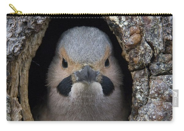 Northern Flicker In Nest Cavity Alaska Carry-all Pouch