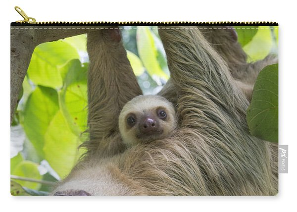Hoffmanns Two-toed Sloth And Old Baby Carry-all Pouch