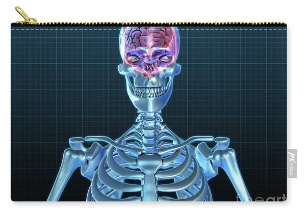 Human Skeleton And Brain, Artwork Carry-all Pouch