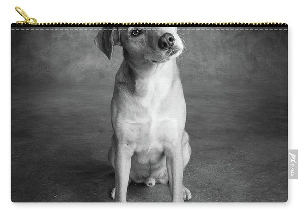 Portrait Of Red Bone Coon Mix Dog Carry-all Pouch