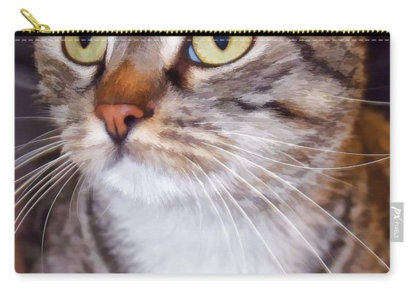 Brown Tabby Carry-all Pouch