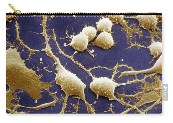 Dendrites Carry-all Pouch