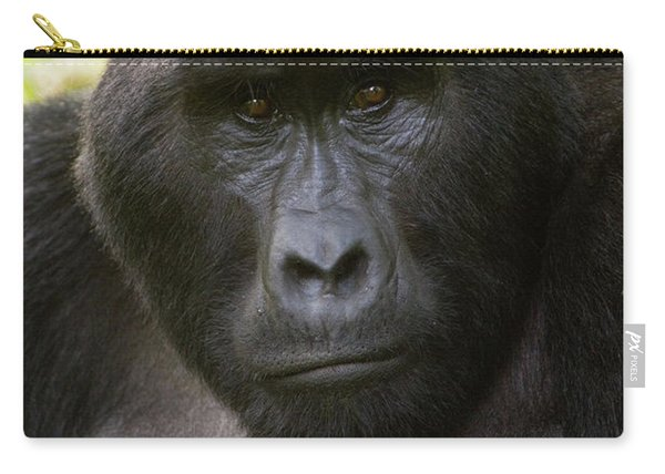 Close-up Of A Mountain Gorilla Gorilla Carry-all Pouch