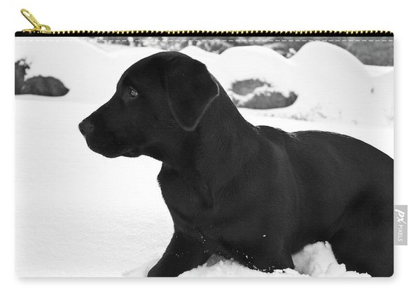 A Black Labrador Retriever Puppy Plays Carry-all Pouch