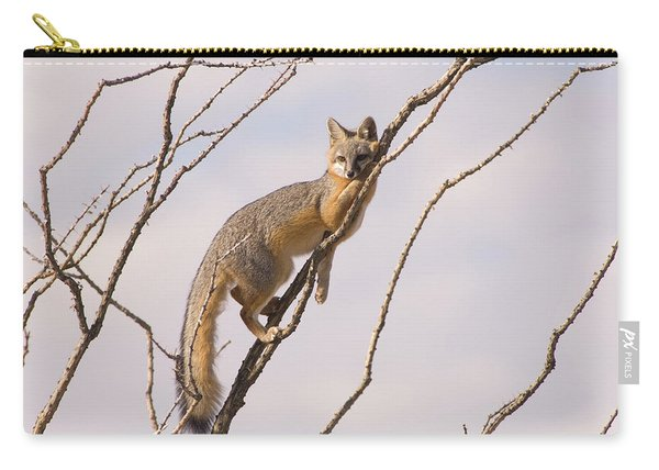 A Gray Fox In An Ocotillo Plant Looking Carry-all Pouch
