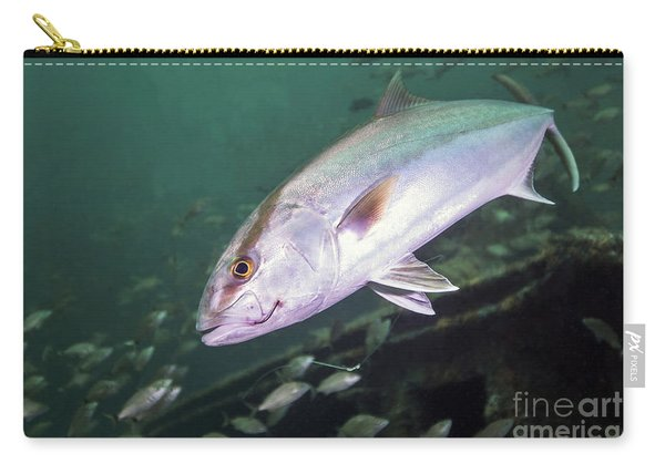 A Greater Amberjack Swimming Carry-all Pouch