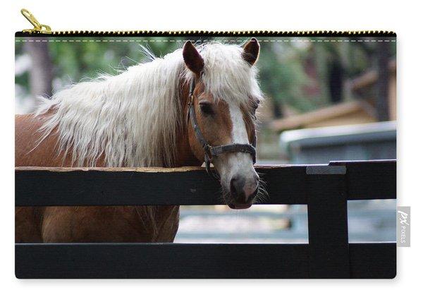 A Hilton Head Island Horse Carry-all Pouch