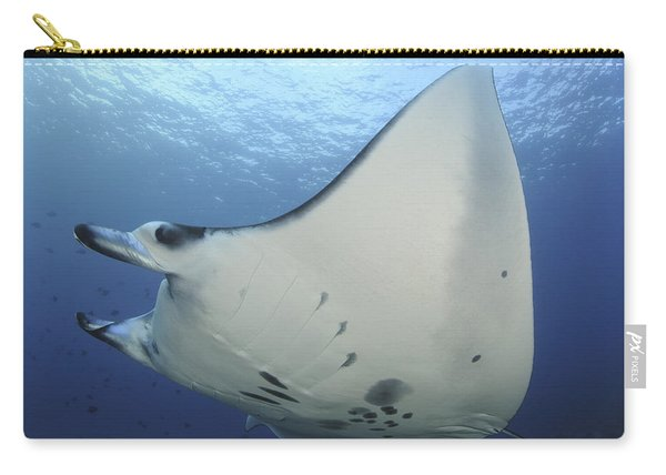A Reef Manta Ray Swimming In Komodo Carry-all Pouch