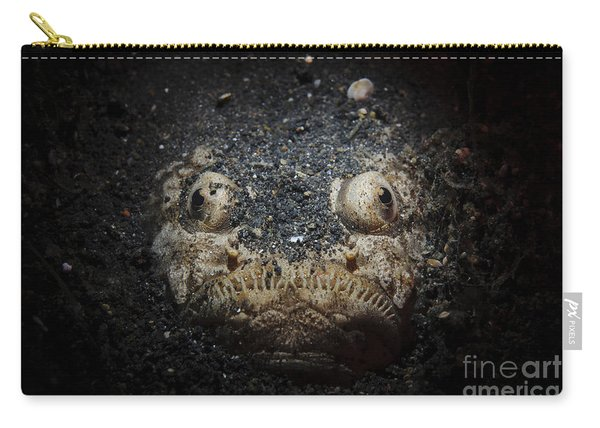 A Reticulate Stargazer Buried In Sand Carry-all Pouch