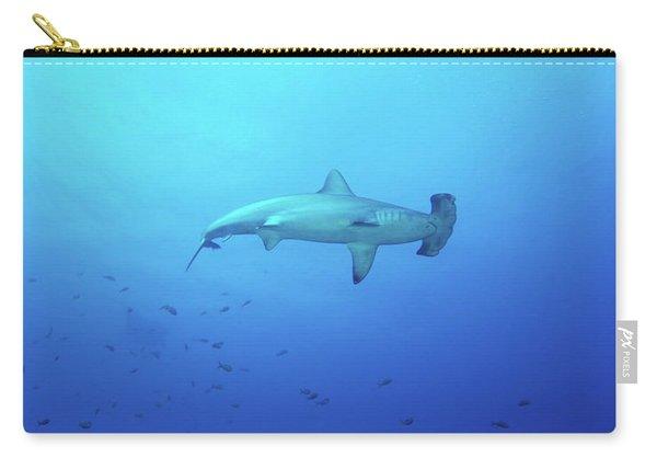 A Scalloped Hammerhead Shark Carry-all Pouch