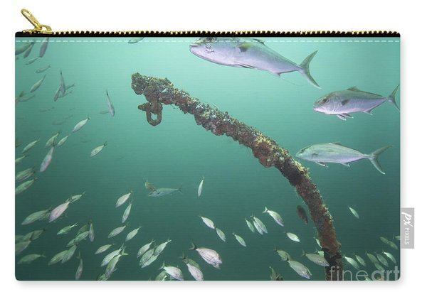 A Small School Of Greater Amberjack Carry-all Pouch