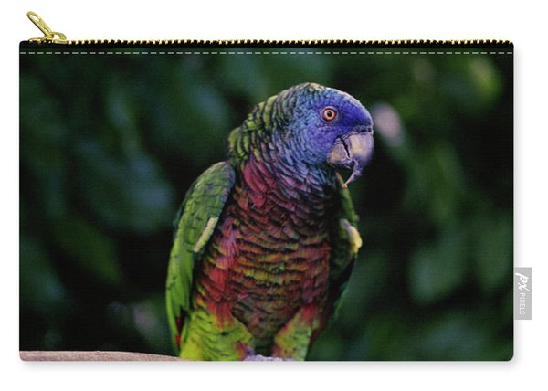 A St. Lucia Parrot. Edmund Forest Carry-all Pouch