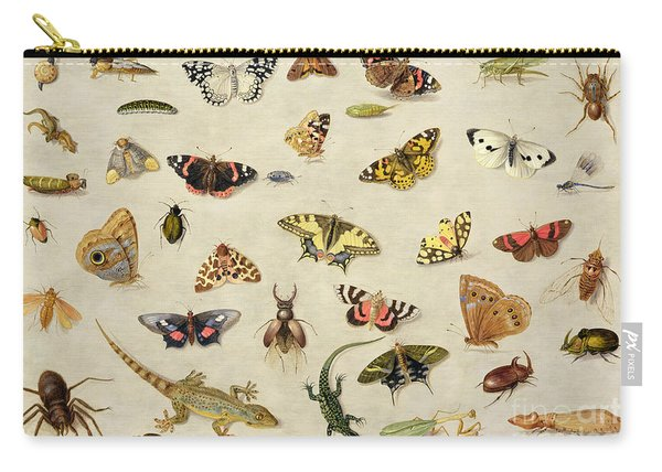 A Study Of Insects Carry-all Pouch