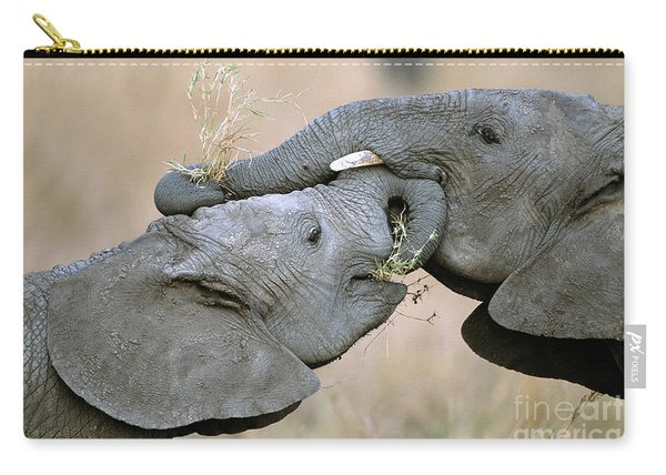 African Elephant Calves Playing  Carry-all Pouch