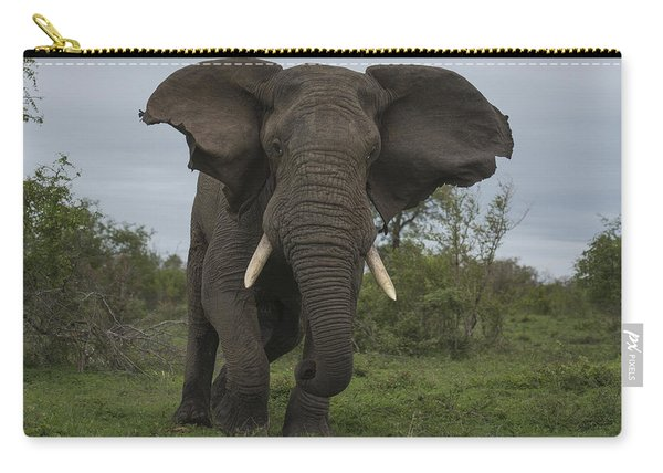 African Elephant Charging Sabi-sands Carry-all Pouch