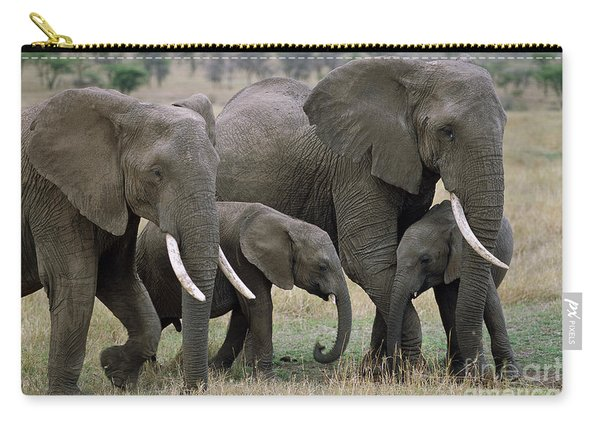 African Elephant Females And Calves Carry-all Pouch