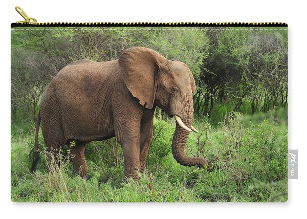 African Elephant Grazing Serengeti Carry-all Pouch