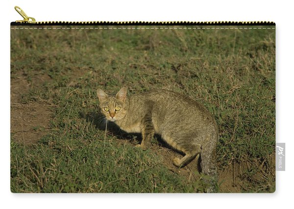 African Wild Cat Stopped In His Tracks Carry-all Pouch