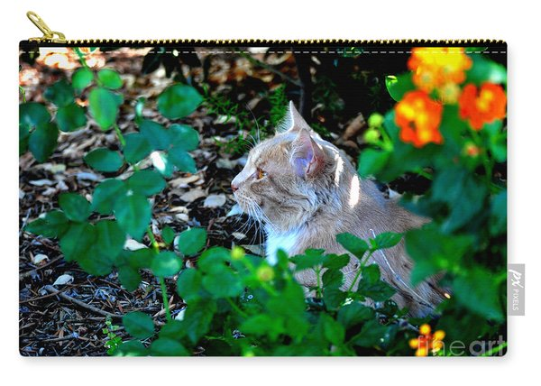 Afternoon Nap Interrupted Carry-all Pouch