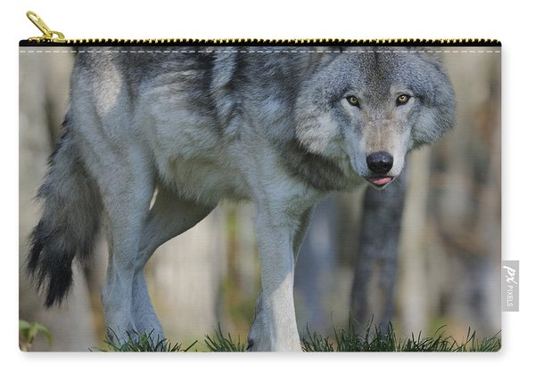 Alpha... Carry-all Pouch