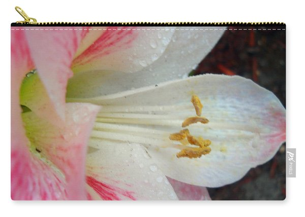 Amaryllis Kissed With Dew Carry-all Pouch