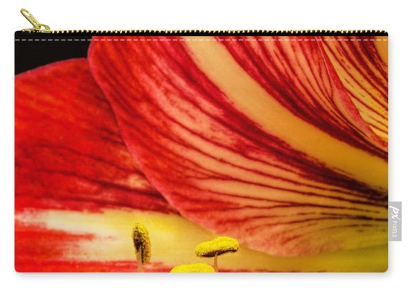 Amaryllis Pollen Carry-all Pouch