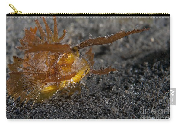 Ambon Scorpionfish, Lembeh Strait Carry-all Pouch