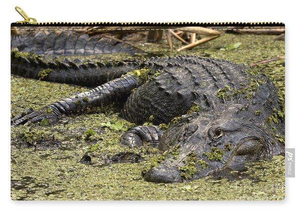 American Alligator Smile Carry-all Pouch
