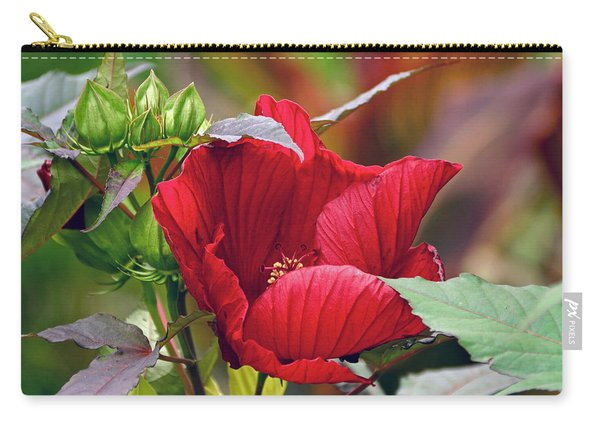 American Beauty --- Hibiscus Coccineus Carry-all Pouch