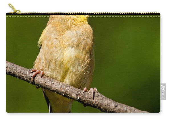 American Goldfinch Singing Carry-all Pouch