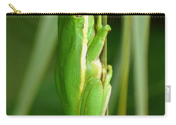 American Green Tree Frog Carry-all Pouch
