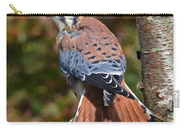 American Kestral Portrait Carry-all Pouch