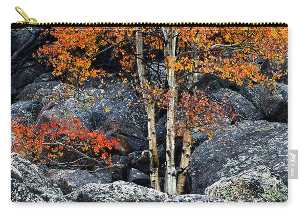 Among Boulders Carry-all Pouch