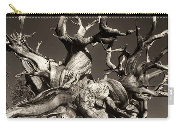 Ancient Bristlecone Pine In Black And White Carry-all Pouch