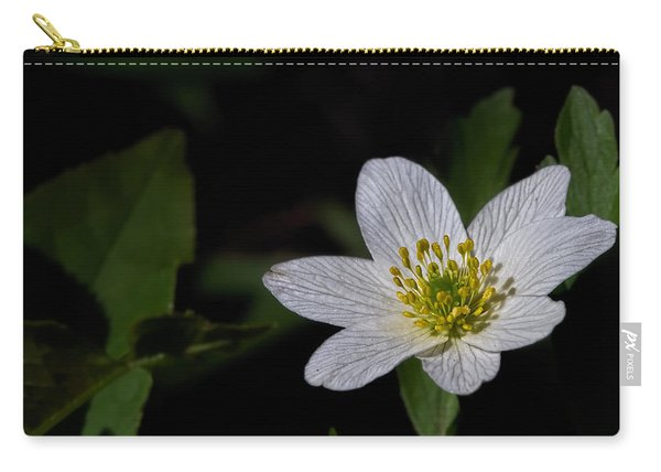 Anemone Nemorosa  By Leif Sohlman Carry-all Pouch