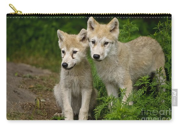 Arctic Wolf Puppies Carry-all Pouch