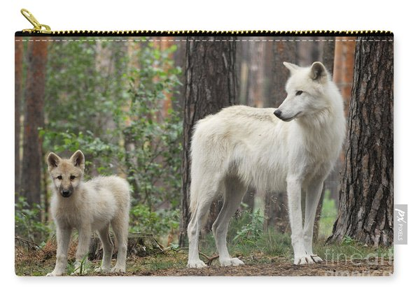 Arctic Wolf With Pup, Canis Lupus Albus Carry-all Pouch